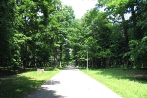 Ąžuolyno parkas