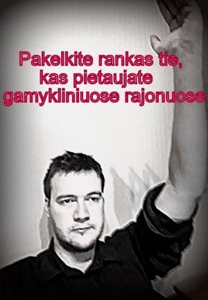 Marius Pečkaitis / KaunoZinios.lt archyvo nuotr.