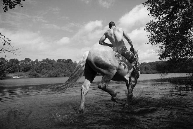 Nick-Turner-Horses-14