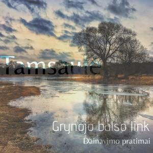 Viršelio nuotraukos autorė - Laura Prascevičiūtė.