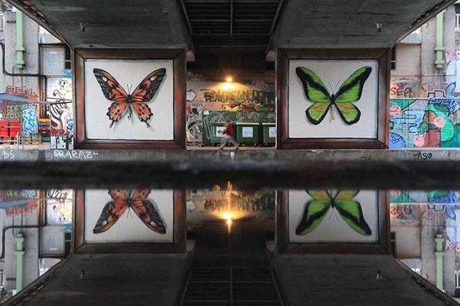 butterfly-murals-mantra-10