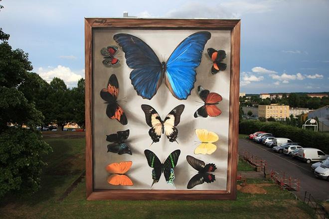 butterfly-murals-mantra-4