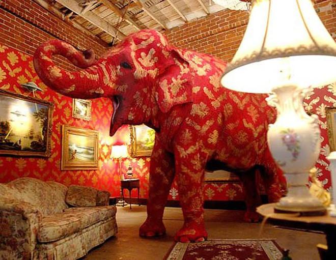 Banksy elephand