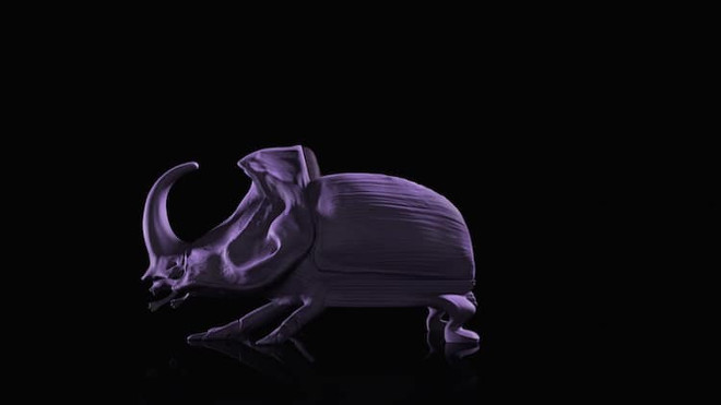 the-animal-chair-collection-maximo-riera-12