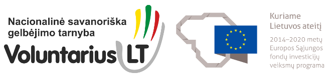 voluntarius+projekto logo